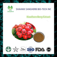 Factory Supply 100% Natural Water-soluble Hawthorne Berry Extract Powder/Flavones/Vitexin/Hawthorn Leaf Powder Extract