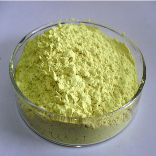 Professional Manufacturer Supply Natural Sophora Japonica Extract