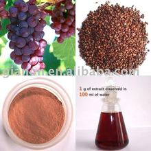 Grape Seed Extract Polyphenols 80%