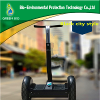 Lithium Battery Electric Scooter with CE approved