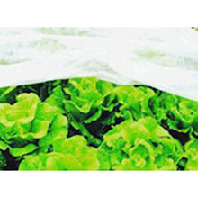 Top Quality Cheapest Price Polypropylene Non Woven Fabric/ Weed Control Plant