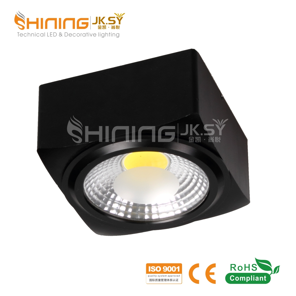 Wholesale Price Surface Mounted Light New Design Led Down light China manufacturer