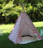 Luxury children kids play teepee tent with balls in cheap price