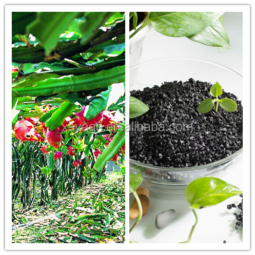 Natural Humic acid from Leonardite/Lignite