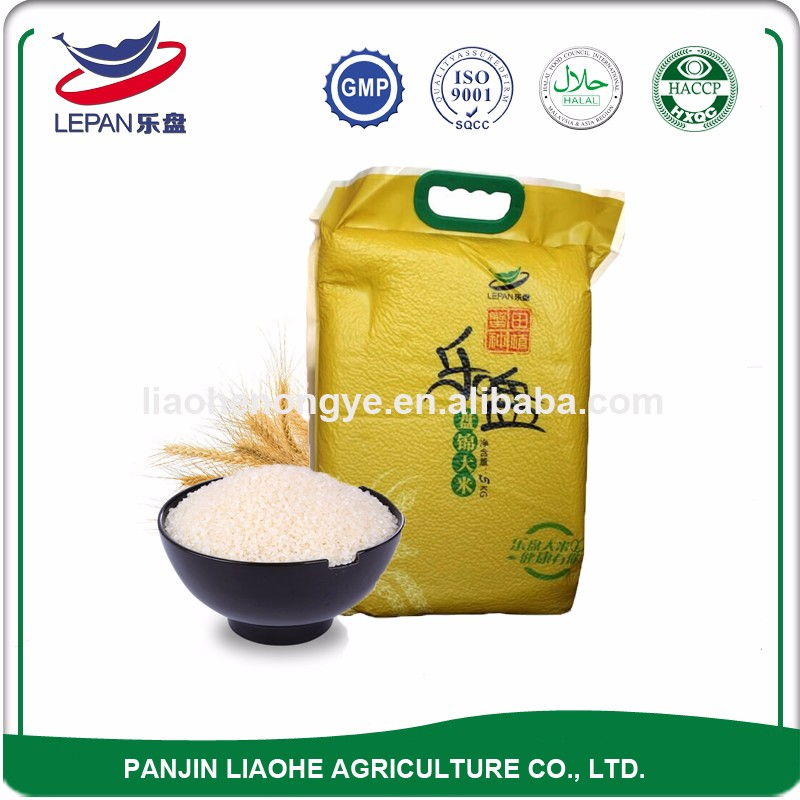 Premium Short Grain Current Year White Paddy Rice