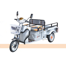 Economic Cargo Trike 48V 500W electric tricycle 3 wheel car mini car truck Factory price china