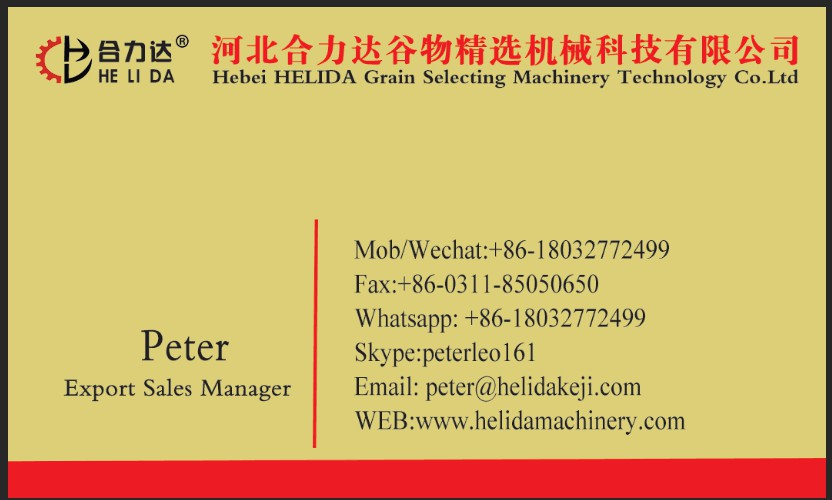 Mexican corn seed cleaning and selecting machine