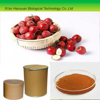High quality Hawthorne Berry Extract with low price for sale