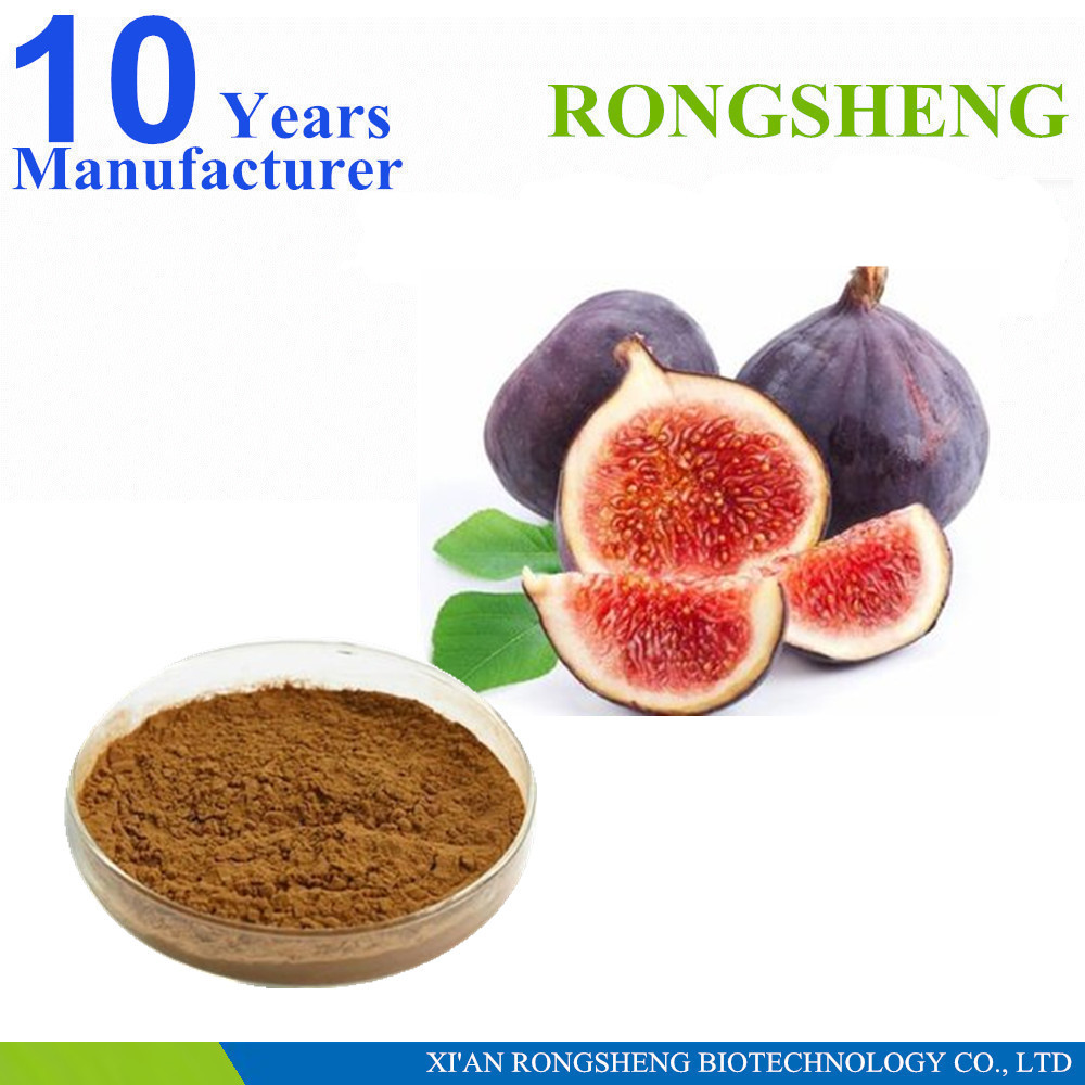 Hot Sale Natural Fig Extract 10:1