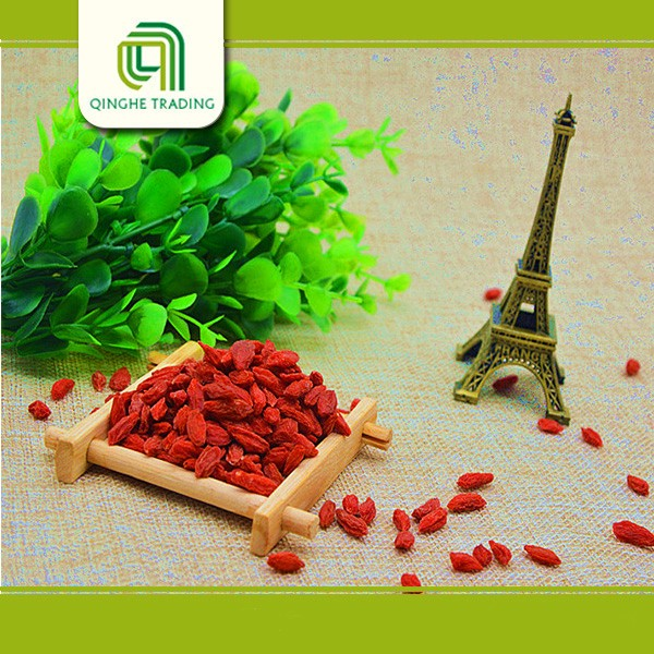 Brand new dried goji berry with high quality natural fruit extracts