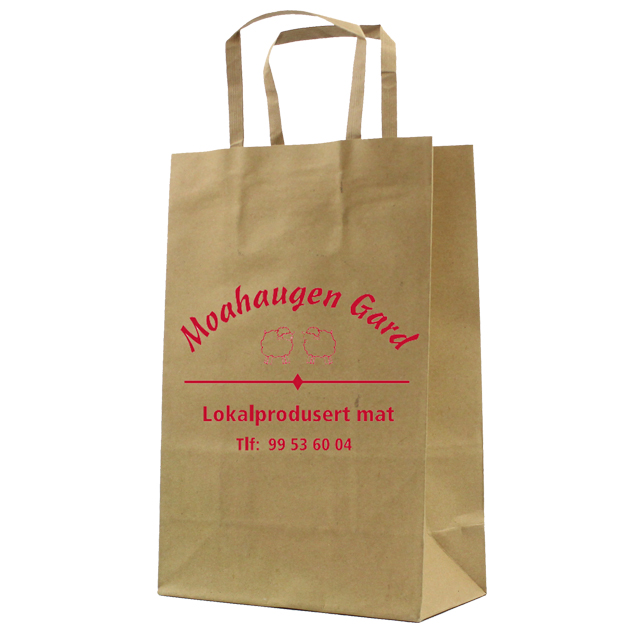 promotion cheap kraft pharmacy paper bag