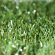 Synthetic Landscape Grass Artificial Turf Lawn