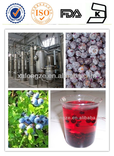 factory supply blueberry juice powder