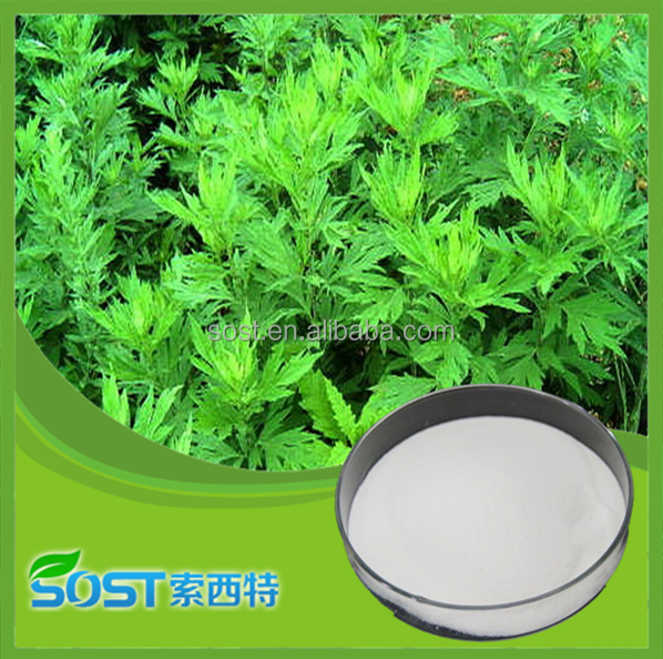 Sweet Wormwood Extract / Artemisia annua L. Extract with Artemisinine 99% Powder by HPLC