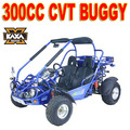 Factory 300cc Street Legal Dune Buggies