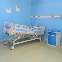 5 Function Electric Hospital Beds For