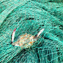 nylon cast fishing net