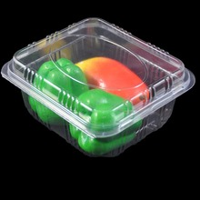 Factory New design 1000g Plastic Fruit Food Packaging Box for sales