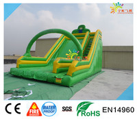 Outdoor commercial giant Inflatable Slide ,BIG ADULT SLIDE green Dry slide inflatable