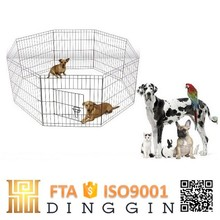 Animals farm dog run