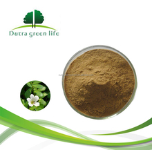China Direct Supplier Bacopa Monnieri Extract Powder in Bulk