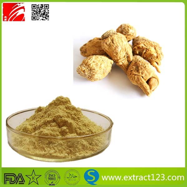 GMP Standard Natural Maca Extarct/ Black Maca Powder
