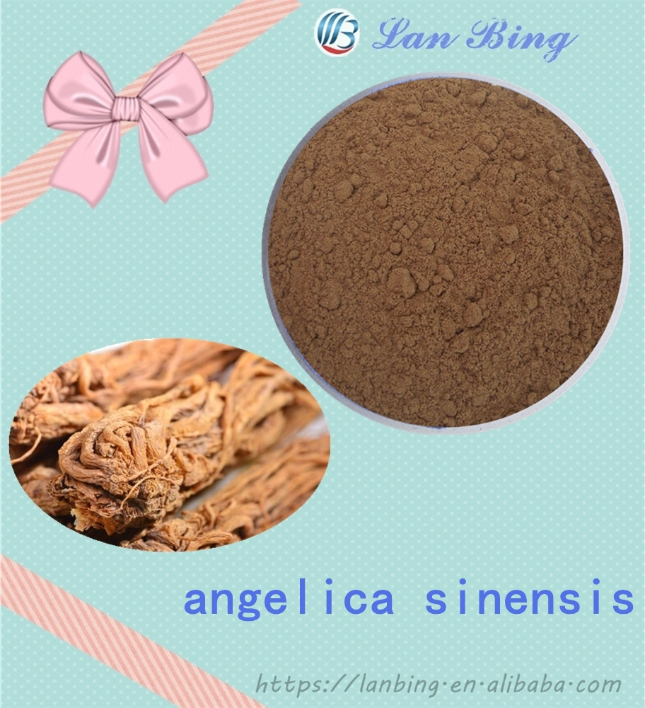 High quality 100% natural angelica sinensis angelica root extract angelica keiskei extract