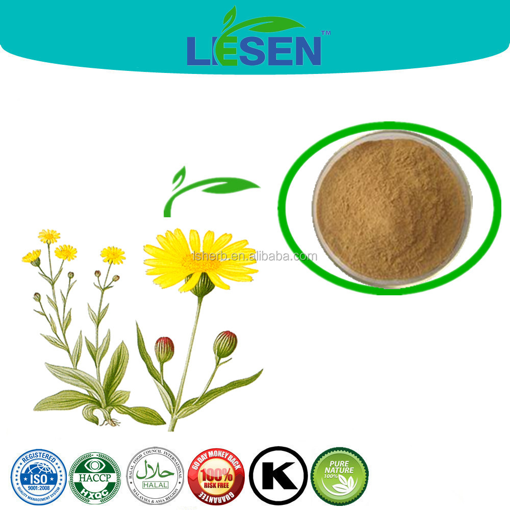 Arnica Flower Extract Powder to Boost Blood Plant Extract 10:1 20:1