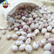 Wholesale china light red speckled kidney bean sugar bean pinto bean for export