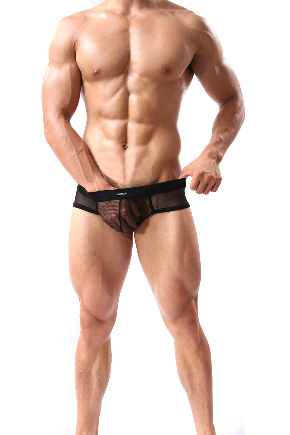 Sexy Men Mesh Briefs 2015 New Trendy See Through Soft Mesh Briefs Underwear Comfy 5081 Mesh Briefs Underwear