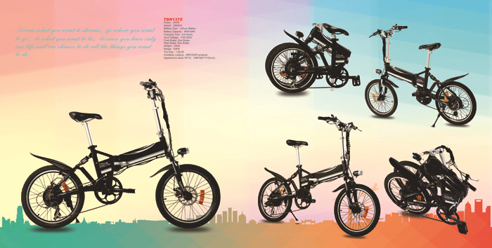 dongguan tailg made in china good design cheap adult electric folding bicycle