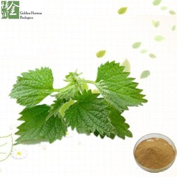Sports Nutrition Nettle Root Extract Powder