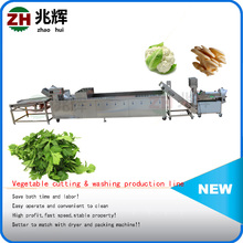 Zhaoqing Food machinery fruit and vegetale washing and drying machine/washing processing machine for vegetable and fruit