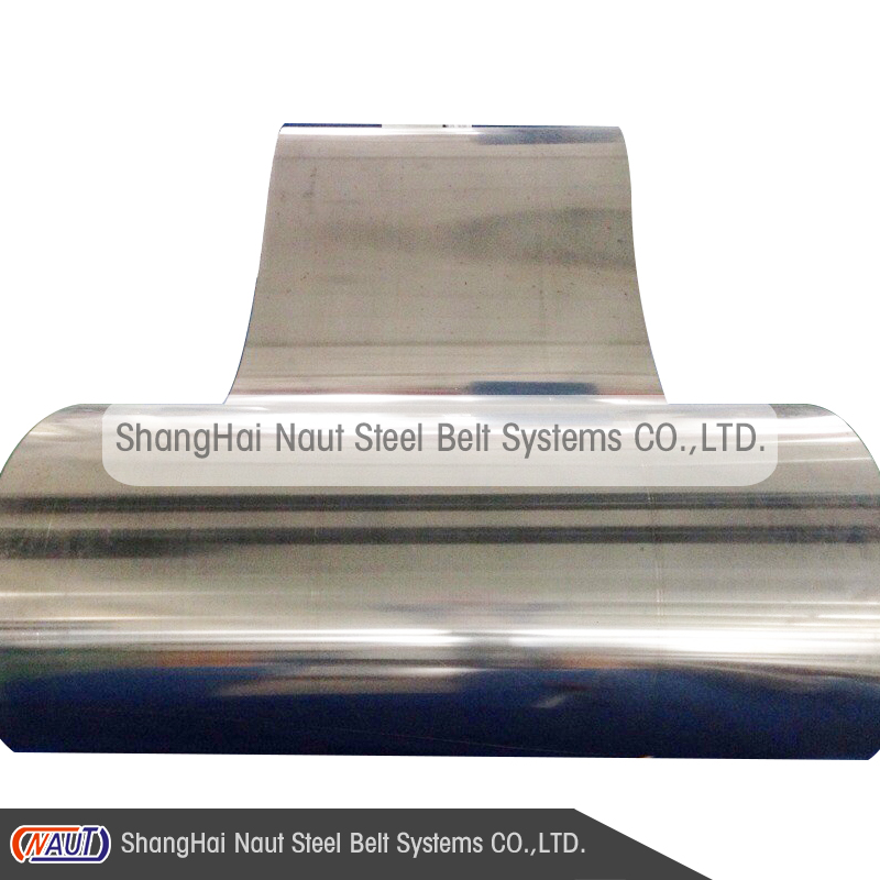 Naut ASS 1000 endless stainless steel conveyor belt for chemical processing