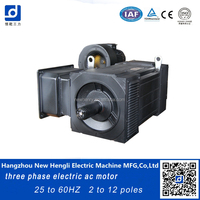 NHL 60 years international 3 phase 20hp electric ac motor
