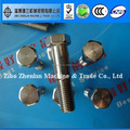 304 316 stainless steel bolt, nut