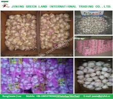 Hot Sale Red Skin Fresh Garlic Price 2017