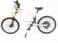 26 inch China special 36v 1000w high speed off road electric bike