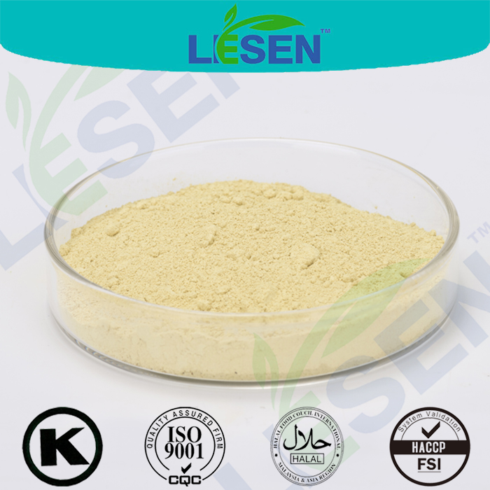 Hot Selling Fennel Seed Extract Powder