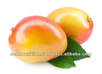 Weight Loss Capsules: African Mango Pills