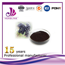 New Product Treat Haemorrhoids maqui berry powder