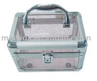 Transparent acrylic cosmetic case