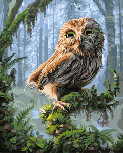 GX8346- 40*50 handmade realist animated images the owl painting on canvas