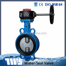 DN150 PN 10/16 /150LB /150PSI/200PSI Cast Iron Wafer Butterfly Valve With Worm Gear Operation