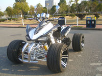 STREET RACER 2014 Zongsheng Engine 250ccm Race Quad ATV