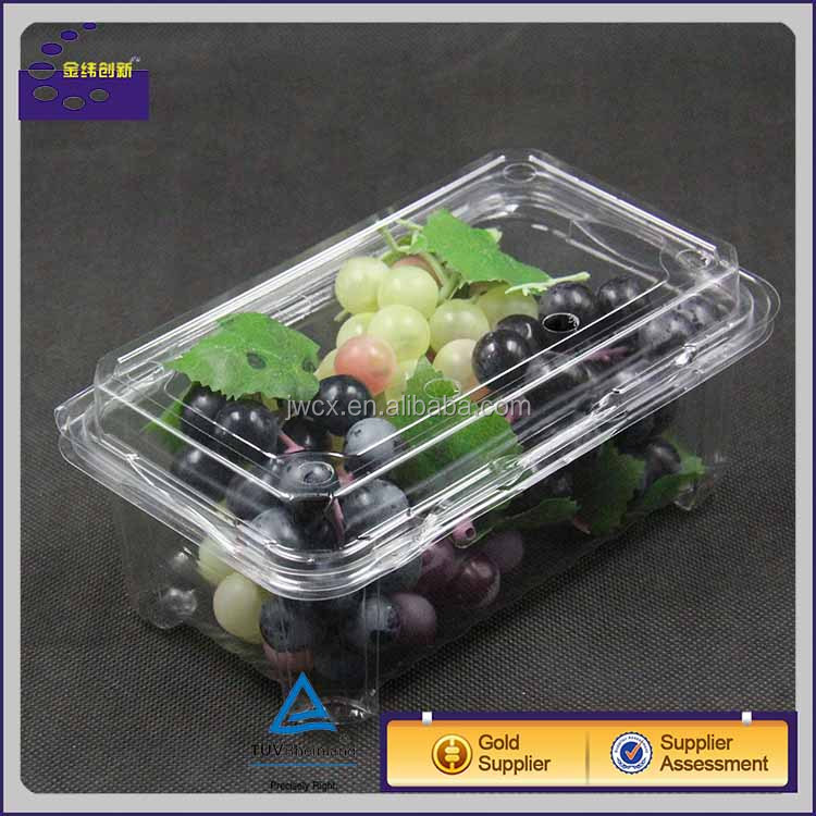 China manufacturer plastic container Frozen food packaging box