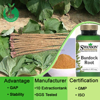 New arrived burdock root extract powder