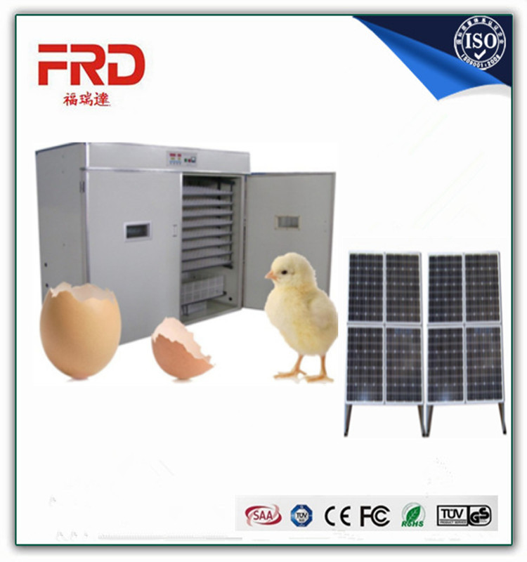 FRD-4224Fully- Automatic Solar Newest Model Three Years Warranty Chicken Duck Goose Ostrich Chicks Quail Turkey Emu Bird Poultry