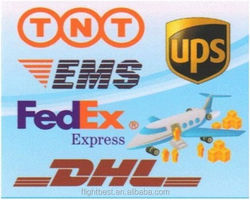 Door to door Air cargo shipments, DDP shipment by plane DHL/UPS/TNT/EMS courier to Arezzo/Ascolipiceno/Asti from china
