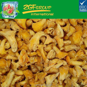 hot sell blanched iqf agaricus bisporus BRC KOSHER ISO supplier